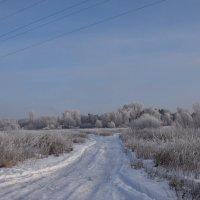Зимняя дорога. :: vkosin2012 Косинова Валентина