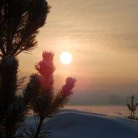 Закат на лысьвенском пруду :: Степан Поросков