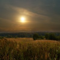 Летние дни :: Наталья Лакомова