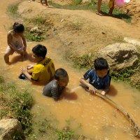 Дети Вьетнама :: Василий
