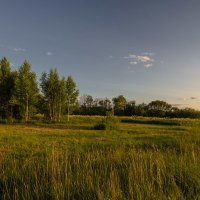 Лето,вечер,перелесок,поле,небо,тишина :: Валентин Котляров