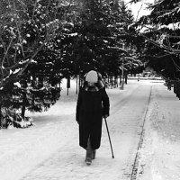 Старость... :: Александр Ермолаев