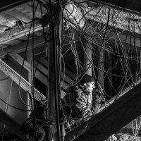рабочие будни :: евгений Смоленцев