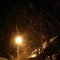 после дождя :: Сергей Макеров
