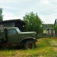 Сельский работяга :: Svetlana27