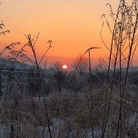 Утро. :: Павел Бескороваев