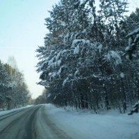 Дороги зимой. :: Андрей