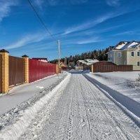 Зимний день в дачном поселке. :: Эдуард Пиолий