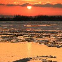 Золотой лёд :: Михаил Лобов (drakonmick)