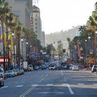 На Голливудском бульваре. :: Николай Танаев