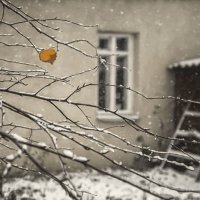 """"""" Тихая грусть... """" :: Светлана Лиханова"""