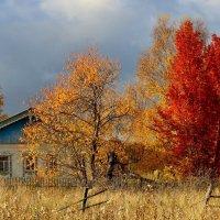 За околицей бродит осень. :: mike95