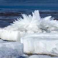 Ледяные Хризантемы :: Юрий Медведев