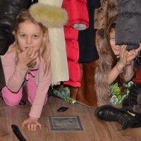 пока родители заняты :: Евгения Дмитракова