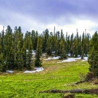 Весна на перевале :: юрий Амосов