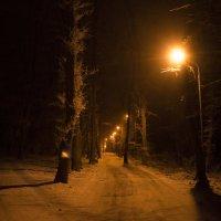 А какую дорогу выберешь ты? :: Геннадий Катышев