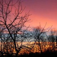 Зимний закат :: Mariya laimite