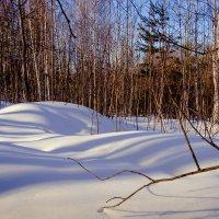 Снежное одеяло :: Марк