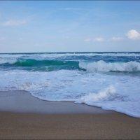 Набежавшая волна :: Swetlana V