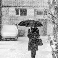снегопад :: Sergey Ivankov