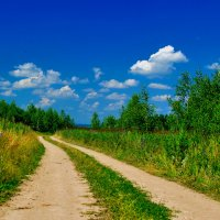 Эх дорожка, полевая... :: Николай В