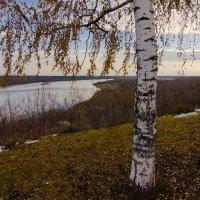 Поздняя осень :: Валентин Котляров