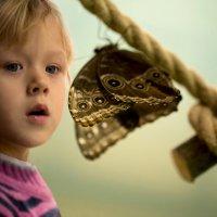 На выставке бабочек :: Елена Ахромеева