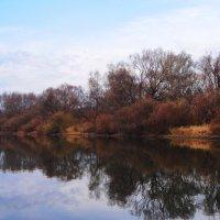 Река Дейма, природа.. :: Антонина Гугаева