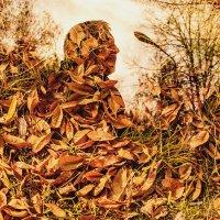 Осень :: Ольга Гнатко