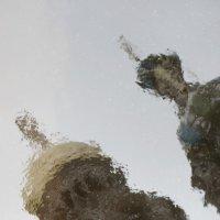 Отражение. :: сергей лебедев