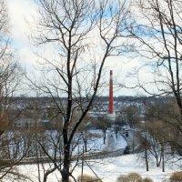 """В парке """"Красное Село"""" :: Алла Aпшиник"""