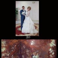 Осенний лес. Пара :: Svetlana Zavsegolova-Haritonova