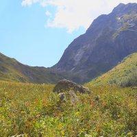Перевал Софийское седло (2640 м) :: Vladimir 070549