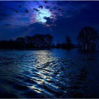 Ночью на разливе :: Nikita Volkov