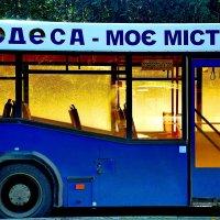 Новый день :: виталий Цицюрский