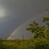 радуга над садами :: gribushko грибушко Николай