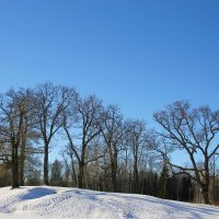 Снежное раздолье февраля... :: Tatiana Markova