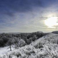 Зимнее солнце теплом не балует... :: Константин Филякин