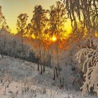 На закате зимнего дня :: Анатолий Иргл