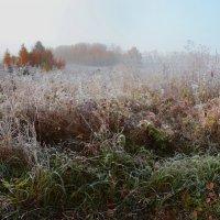 туманный восход :: Татьяна Малинина