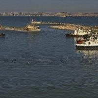 Суета в проливе :: M Marikfoto