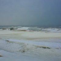 Финский залив :: Анна Никонорова