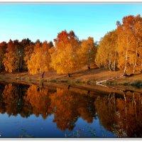 Золотая осень :: Виктор Новоженин
