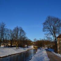 Синий февраль. :: zoja