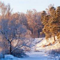 Мороз и солнце :: Алексей Дмитриев