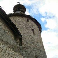 Сторожевая башня в Пскове :: Александр