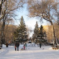 Прогулка по зимнему парку :: nika555nika Ирина