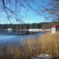 Озеро Белое :: нина полянская