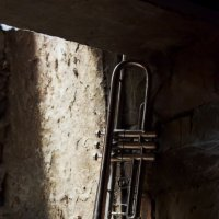 одинокая труба :: Михаил Криушонков