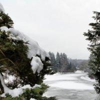 Чехия зимой :: Елена Брискина